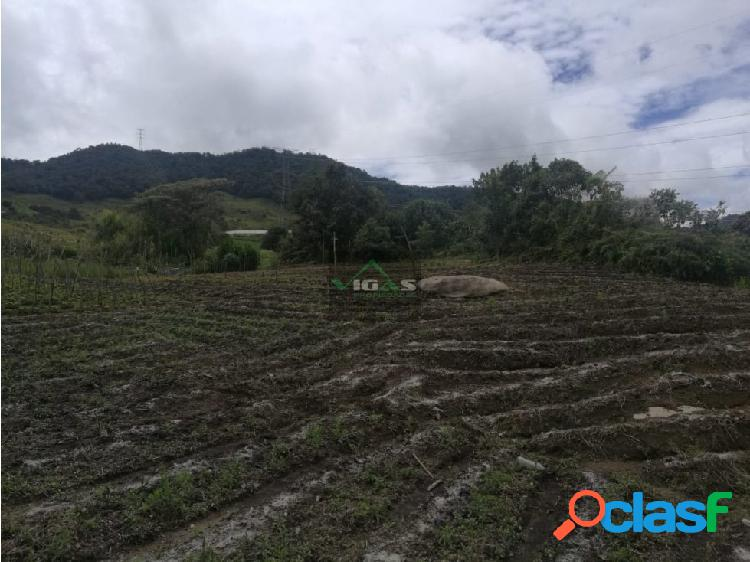Venta de lote en el Carmen de Viboral Antioquia