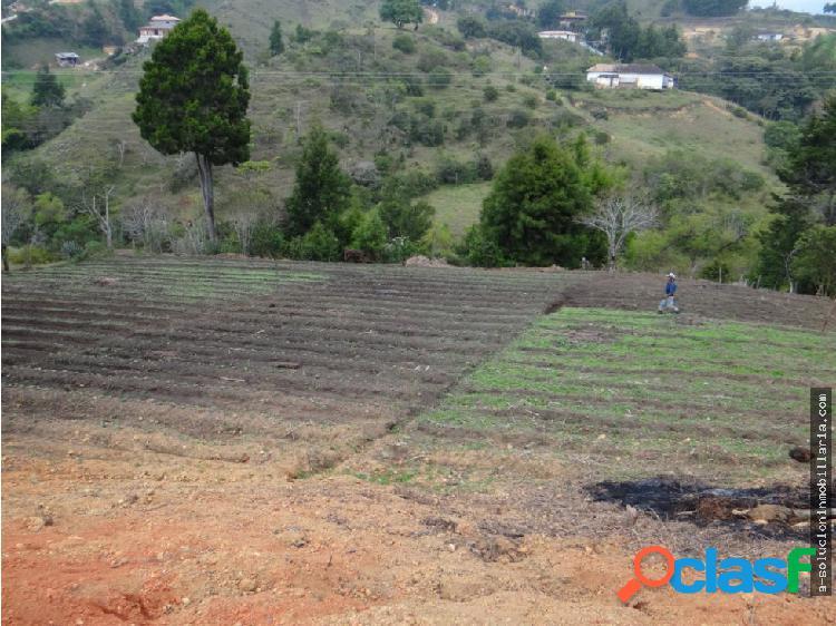 lote en venta Rionegro Antioquia oferta ganga