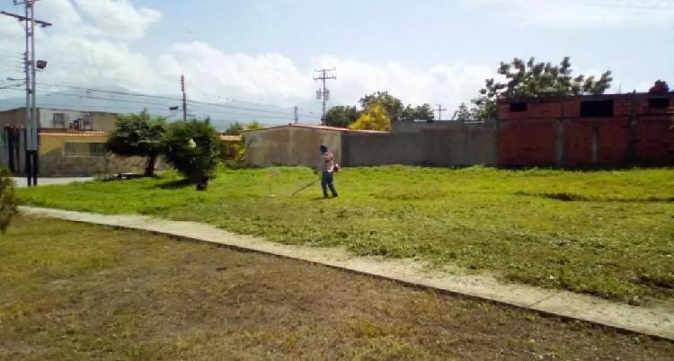 Jardineria mantenimiento y diseño de jardines y áreas