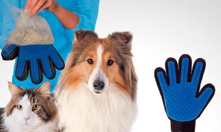 Guante para Remover Pelo de Tus Mascotas
