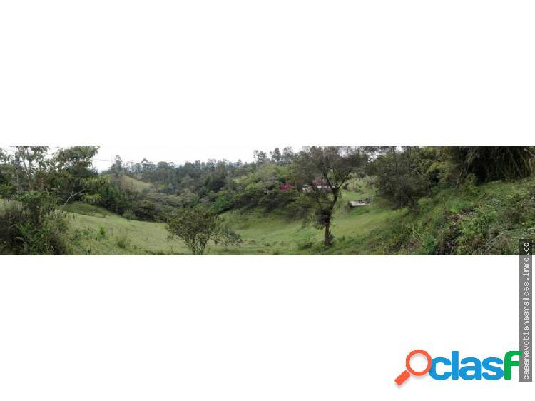 VENDO LOTE EN RIONEGRO DE 3.9 HECTAREAS