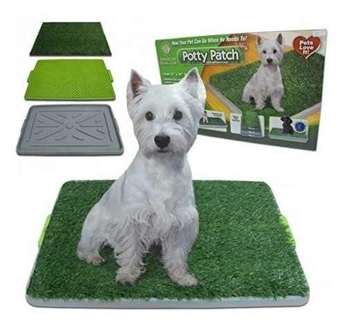 Potty Patch - Económica Caja De Arena Para Perros Y Parche