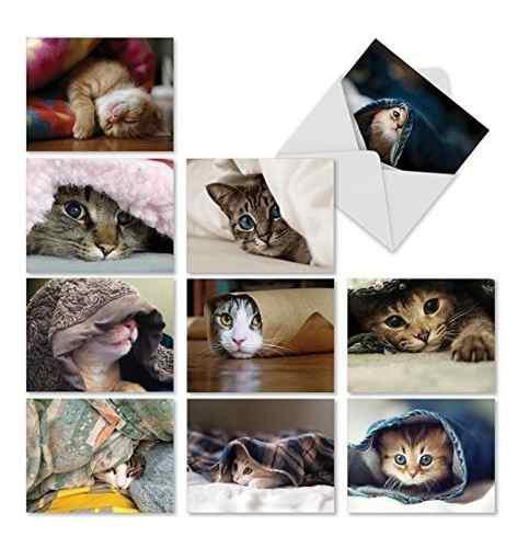 M1543bn Cat You See Me Now ?: 10 Tarjetas En Blanco Surtidas