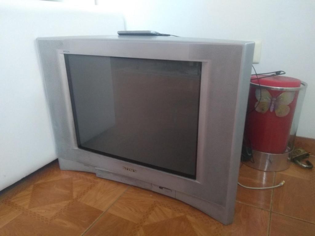 Televisor Sony 21 Pulgadas Barato!