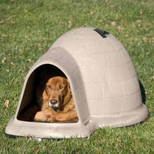 Casa Iglu Para Mascotas - X-grande - Importada