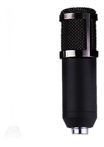 Microfono Condensador Bm800 Grabacion Profesional Computador