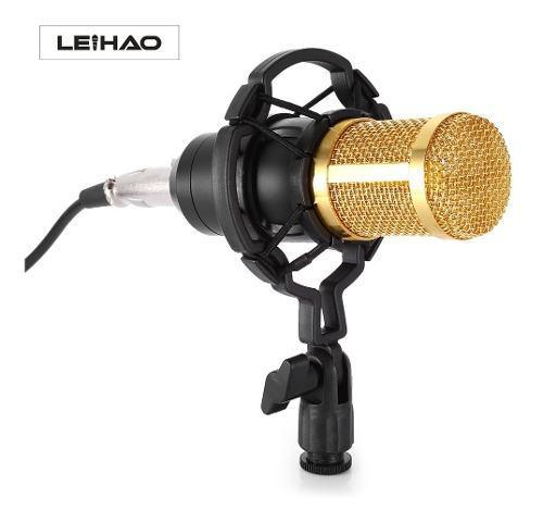 Microfono Condensador Profesional Estudio Grabacion Bm-800