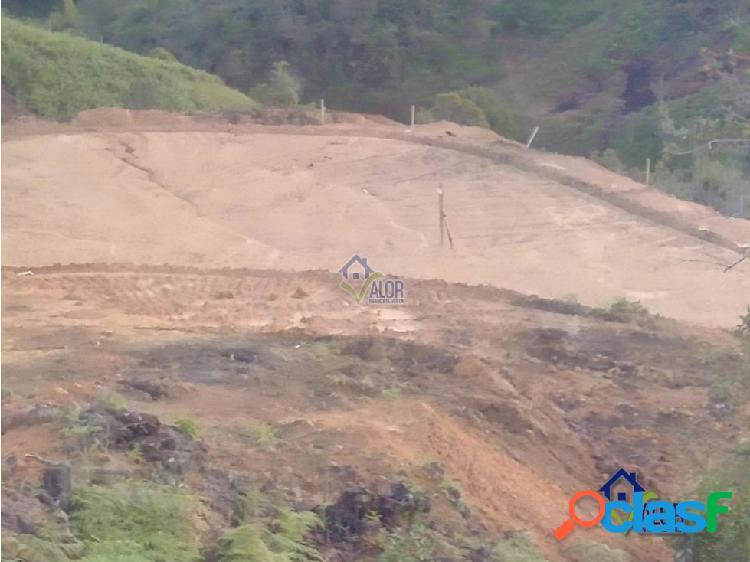 Venta de lote en San Vicente Vereda Piedra Gorda