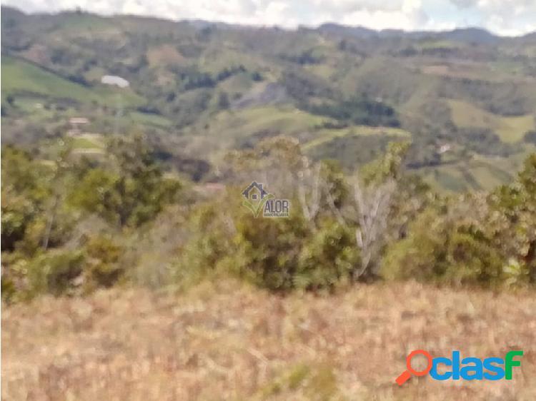 Venta de lote en San Vicente Vereda La Floresta