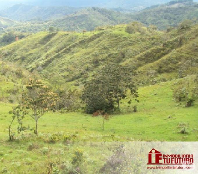 Se vende casa finca en Guadalupe (Antioquia)