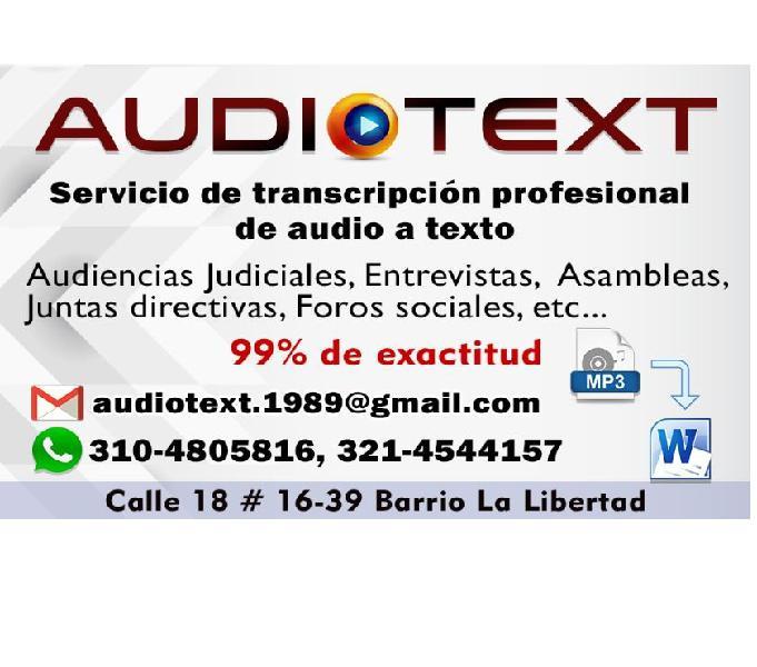 Transcripción Profesional de audio a texto.