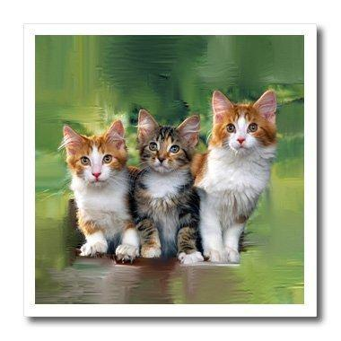Gatos R Three Little Kittens R Hierro Sobre Calor Transferen