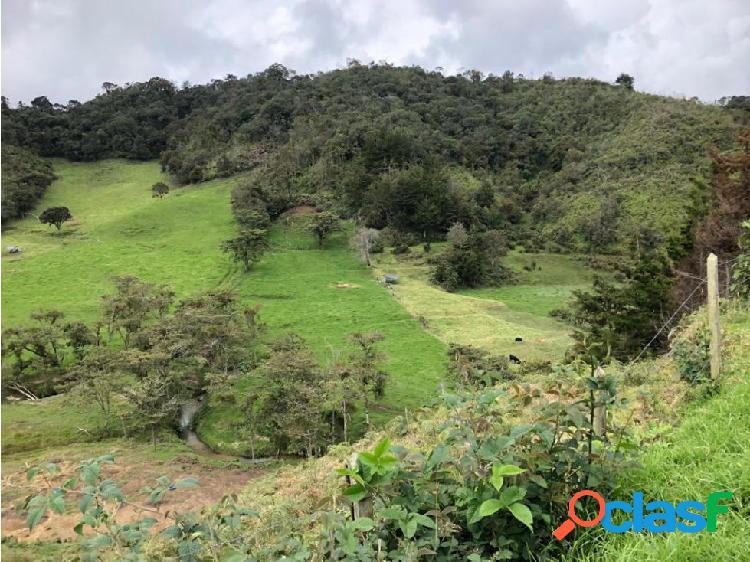 Lote en Venta El Retiro Antioquia