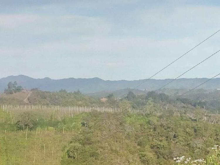 Venta de lote en San Vicente Vereda La Floresta _