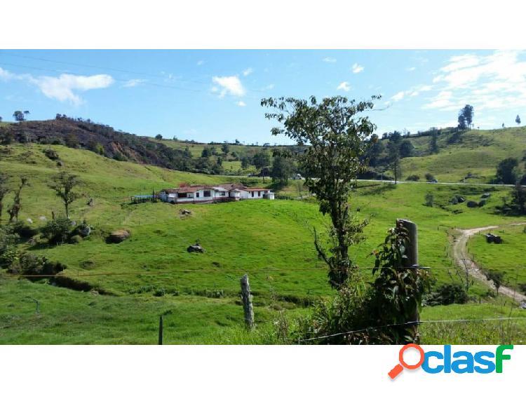 Finca agroindustrial en Venta Santa Rosa