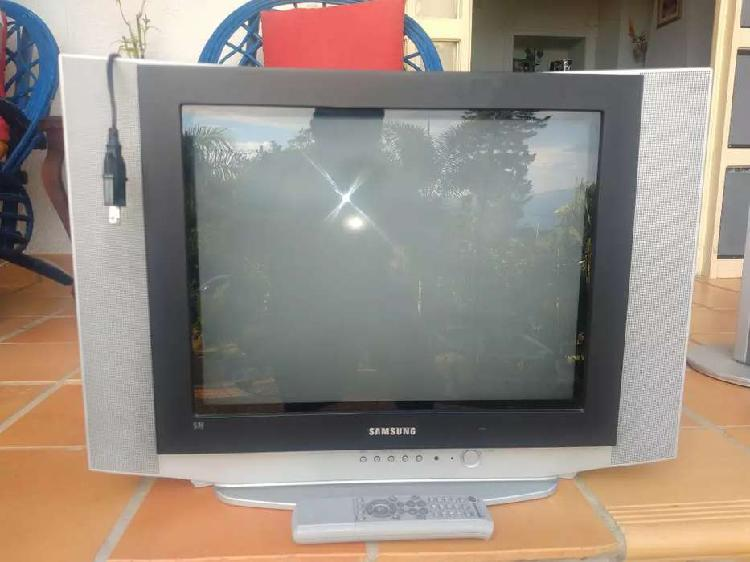 Tv de 21 pulgadas Samsung