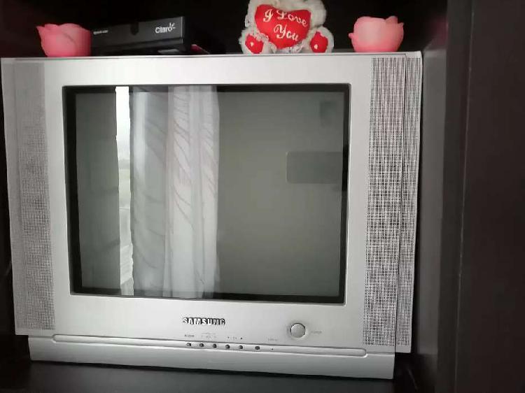 TV Samsung 21 pulgadas.