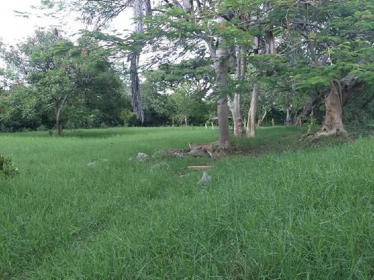 Venta de Lote en Tulua Valle - Entrada Sur de Tulua - 10.000