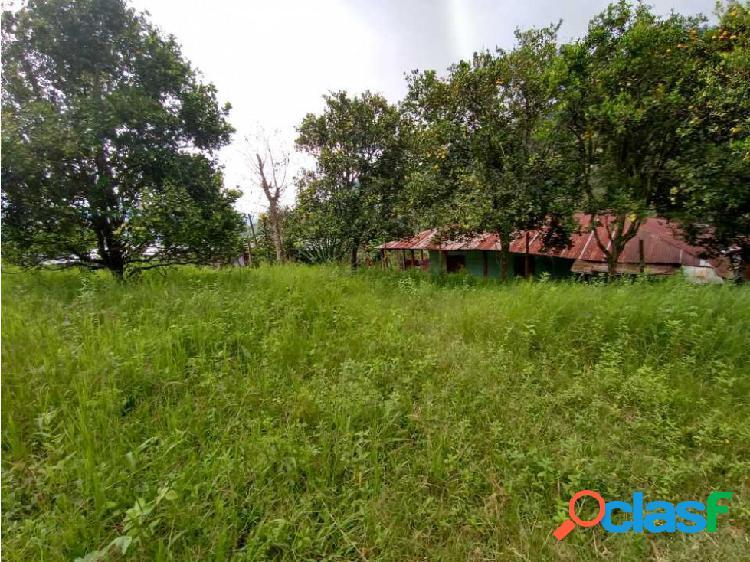 Venta Finca 5 hectáreas producción y descanso, Cañon