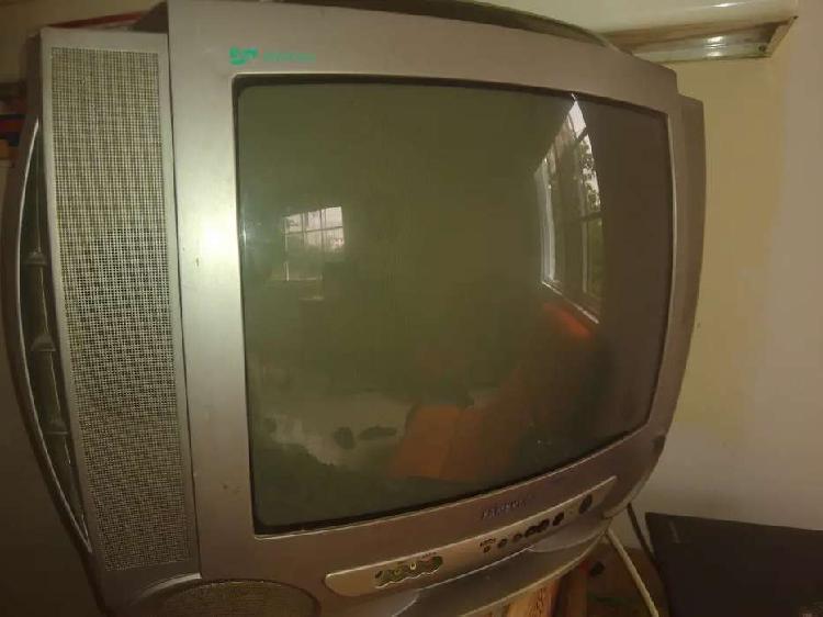 """TV 21"""" EN BUEN ESTADO"""