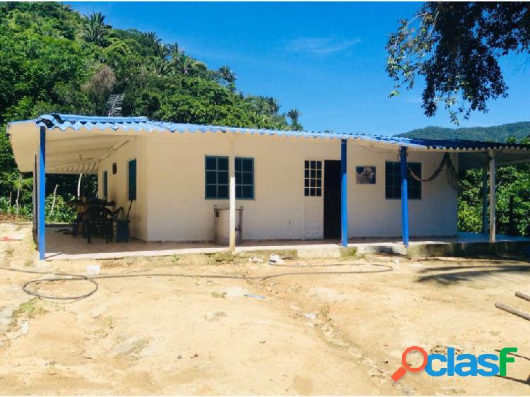 Finca 114 Ha Cerca al Parque Tayrona, Calabazo Santa Marta