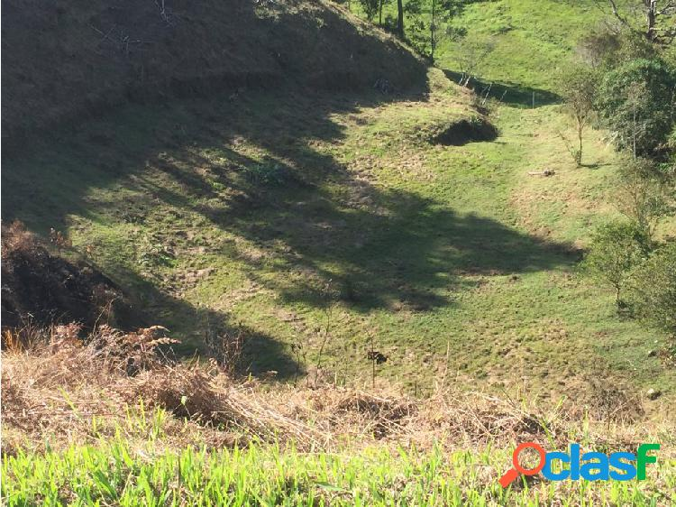 Lote en Venta en San Vicente Ferrer Antioquia