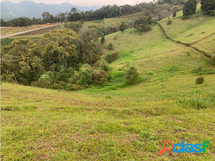Lote en Venta sector El Capiro en Rionegro 4.858,84 m2