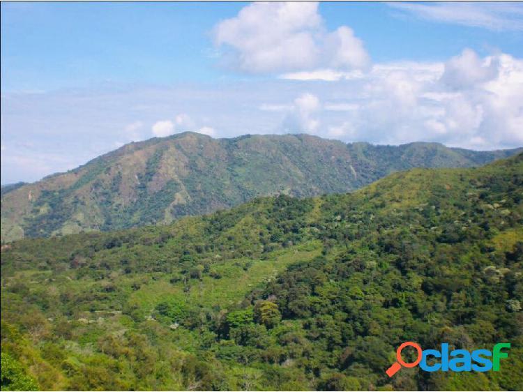 Finca 30 Hectáreas con Río Ciénaga Santa Marta Colombia.